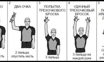 Правила баскетболу: жести суддів в баскетболі